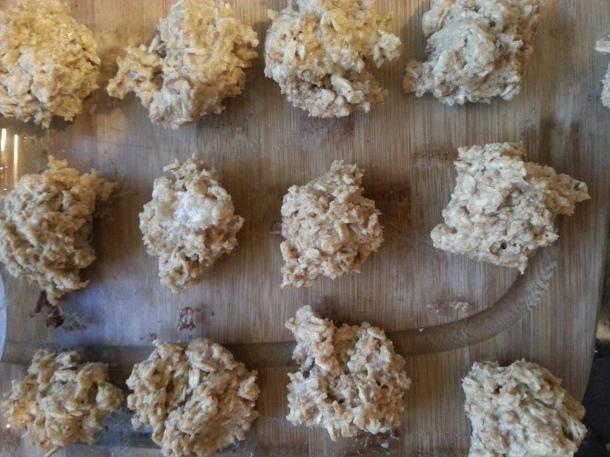 vanilla protein balls